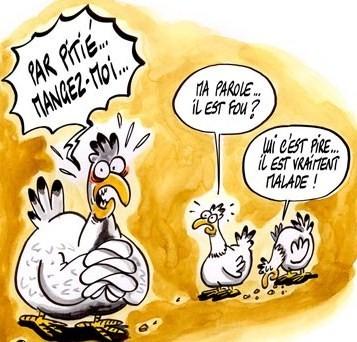 poulets.jpg