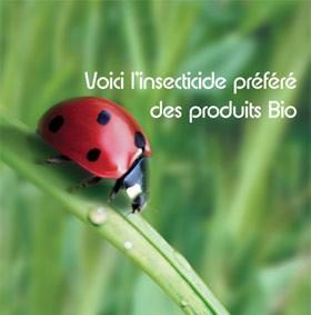 image_bio.jpg