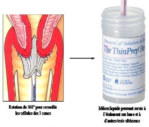 Figure 2.jpg